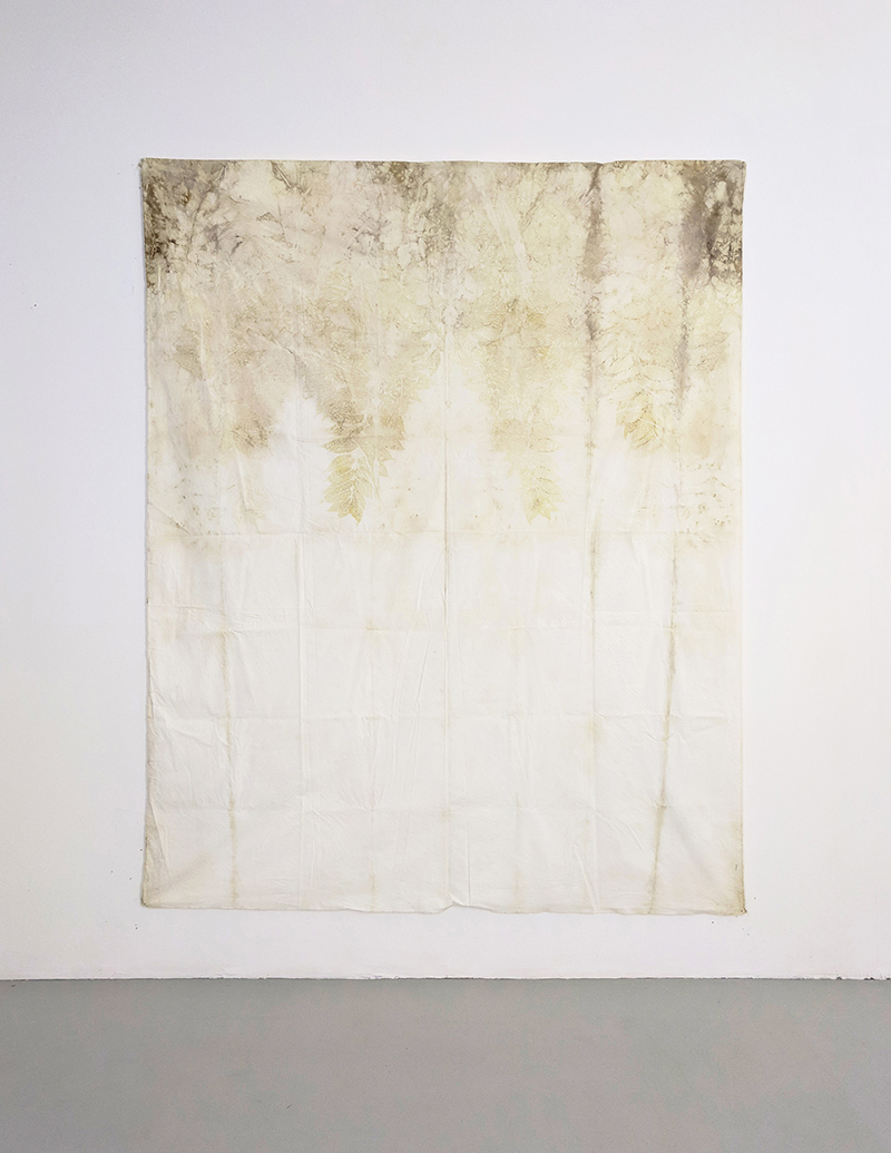 Francesco Fossati, Ailanto Alto, 2018, ecoprint on organic cotton, 150 x 185 cm